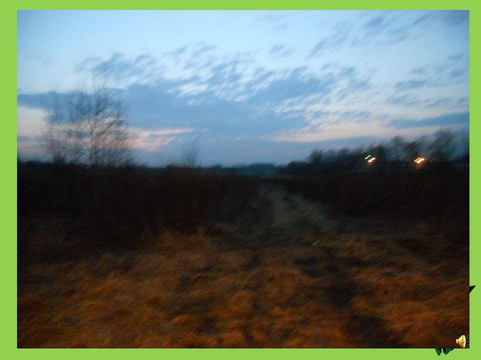 Godzina: 18.30 Temperatura [oC]: 13 Ciśnienie [hPa]: 1001,91 Stan pogody: słonecznie Wiatr [km/s]: 21  Opady: ----